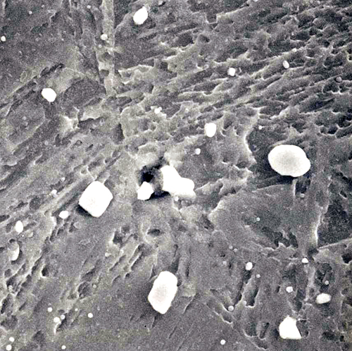シリコロイA2、HRC52(金属間化合物、Nb-Si系) 倍率:5000倍
