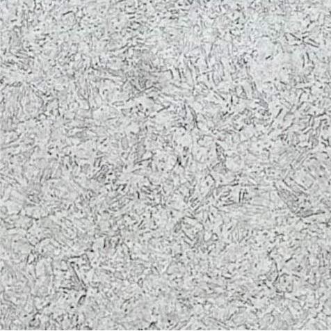 クロス鍛造材 顕微鏡組織(100倍)D