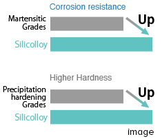 Well-balanced in hardness and corrosion resistance