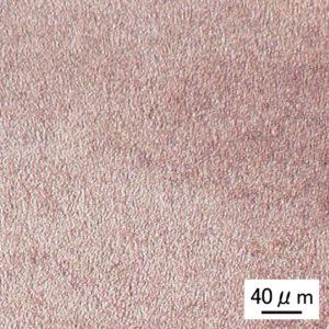 顕微鏡組織観察ー時効硬化熱処理 200℃ + 460℃/AC