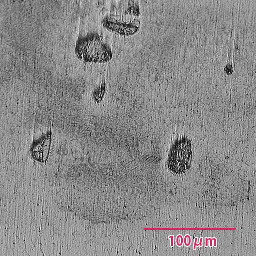 顕微鏡組織 700倍